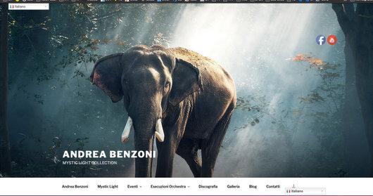 Andrea Benzoni www.andreabenzoni.com